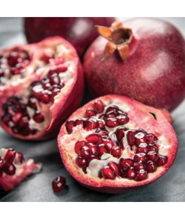 Pomegranate-Solo/Dual (Beyaz)