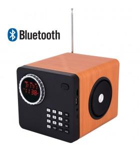 SR-154  RETRO Taşınabilir Özel Tasarım Bluetooth Hoparlörlü + Kumandalı + Radyolu Oynatıcı ( Yeni Versiyon )